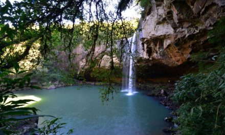 Turismo: saiba quais cidades do RS explorar