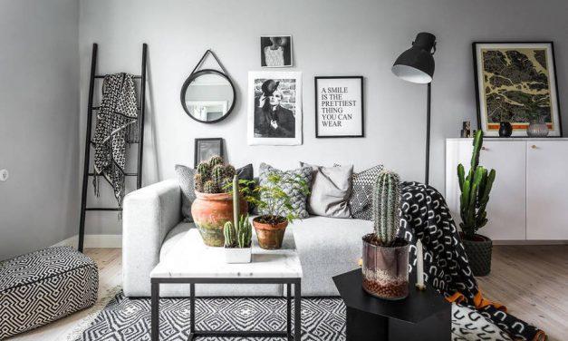Plantas e flores para ter no seu apartamento