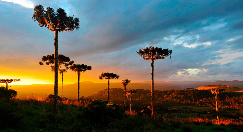 4 lugares menos conhecidos da Serra para explorar