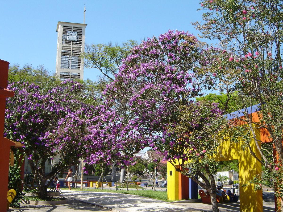 Praça das Rosas